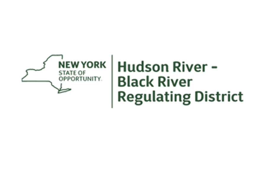 NYS Audit Report